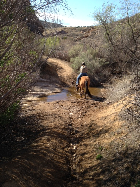 Vasquez Rocks Stream Crossing